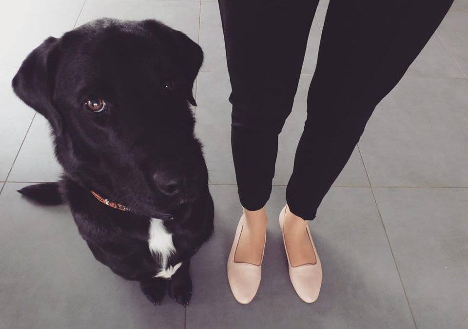 J'ai testé pour vous … la commande de chaussures véganes sur le site Avesu !